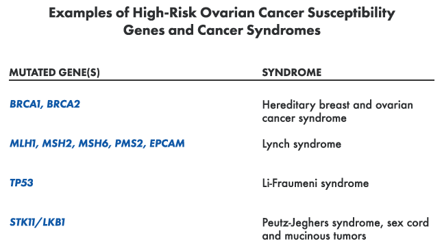 Ovarian Cancers Research Guide